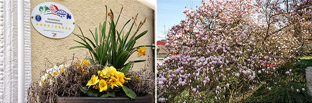 Frühling an und um die Villa Hedwig
